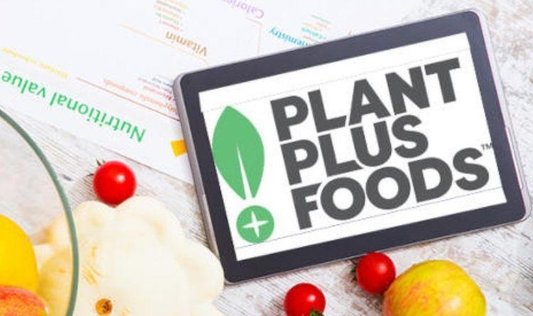 PlantPlus Foods inicia operação com carne 'plant-based' no Brasil neste mês - Newtrade