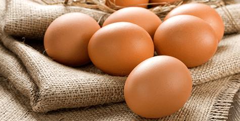 Como escolher ovos bons - Food Safety Brazil